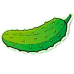 dill shots favicon